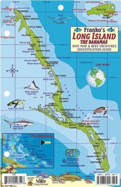 Bahamas Fish Card, Long Island 2011 by Frankos Maps Ltd.