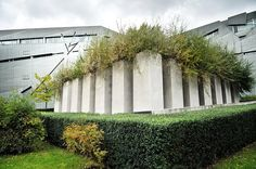 The Garden of Exile at the Jewish Museum in Berlin