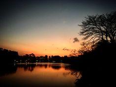 Parque do Ibirapuera  - SP / Brasil.    Foto: Beth Santos