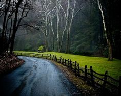 the solitary joy of a walk along a country road