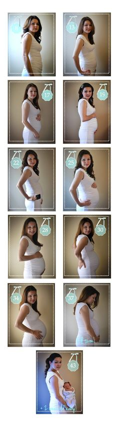 Pregnancy timeline photo project!