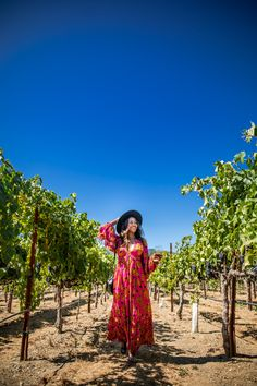 Top US travel blooger, Alicia Tenise, features Sonoma Dry Creek Valley and share why she thinks it should be your next wine destination. Wine Stand, Dry Creek, Sonoma County, White Man, Black Man, Wine Country, Wine Tasting, Wineries