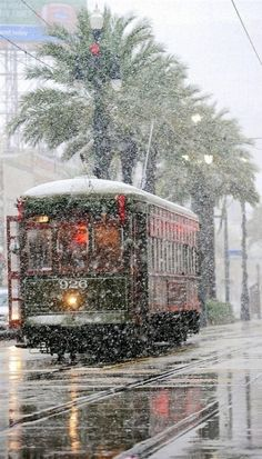Snow in New Orleans! Loved the trolleys! No snow for us.but loved New Orleans! Winter Szenen, Winter Time, Winter Light, Snow In New Orleans, New Orleans Christmas, Trains, Snow Scenes, Winter Beauty, Winter Wonderland