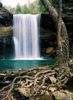 Water, rocks and roots by James Jordan, via Flickr