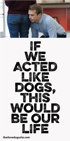 If We Acted Like Dogs THIS Would Be Our Life...