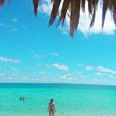 Cuba memories by Cuba Beaches, Varadero, Mojito, Palm, Bikini, Memories, Sun, Instagram Posts, Water