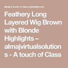 Feathery Long Layered Wig Brown with Blonde Highlights – almajvirtualsolutions - A touch of Class