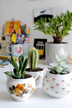 new in | homewares + teacup planters | burkatron | DIY + lifestyle blog