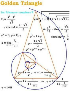 The Golden Ratio in a Spiral and Triangle (Fibonacci Numbers, Geometry) Golden Ration, Divine Proportion, Pseudo Science, Science Art, Fibonacci Spiral, Fibonacci Number, Fibonacci Tattoo, Math Formulas, E Mc2