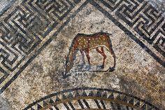 mosaico11. Un cervatillo