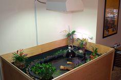 New Diamond Back setup - Map Turtles and Diamond Back Terrapins - Turtle Times Forums