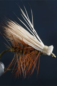 Fly Fishing...Elk Hair Caddis. x a favorite of central CO trout