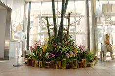 KADOMATSU (Japanese lucky charm using giant bamboo)