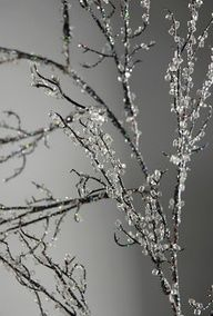 """How to make iced branches, or ice anything for winter"""" data-componentType=""""MODAL_PIN"""