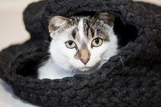Katzenhöhle aus Textilgarn häkeln