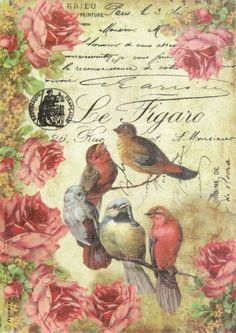 Ricepaper& Decoupage paper, Scrapbooking Sheets & Paper Le figaro Birds in Crafts, Multi-Purpose Craft Supplies, Crafting Paper Decoupage Vintage, Paper Napkins For Decoupage, Decoupage Art, Vintage Diy, Vintage Ephemera, Vintage Cards, Vintage Paper, Vintage Postcards, Images Vintage
