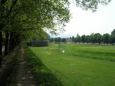 The fortified walls of Lucca