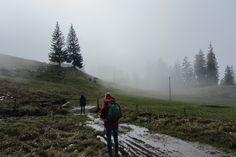 Mistige wandeling in Zwitserland