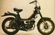 Demm Panther 1981