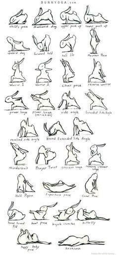 Bunny Yoga Asanas !_! bunnyoga.com: