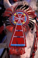 Adorned Horsehead, Crow Fair, Crow Indian Reservation, Montana, USA