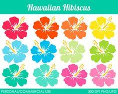 Hibiscus hawaiano imágenes prediseñadas gráficos por MareeTruelove