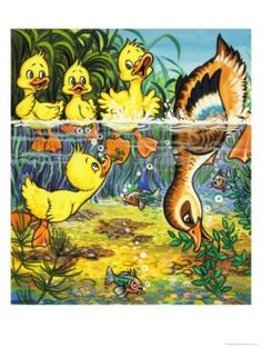 Duck and Ducklings Giclee Print (allposters, Make Way For Ducklings, Duck And Ducklings, The Story About Ping, Preschool Books, Book Activities, Five In A Row, Pond Life, Baby Ducks, Good Night Moon