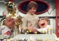 """nostalgicgifs: """"Luke Skywalker and Princess Piggy - The Muppet Show (1980) """""""