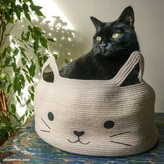DIY: rope bowl cat bed