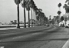 W Cabrillo Blvd, Santa Barbara, California by neville samuels, via Flickr