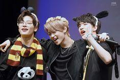 Jeongin, Felix and Hyunjin