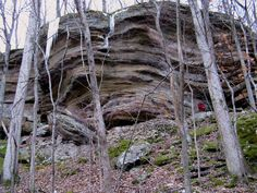 Hoosier National Forest, an Indiana National Forest - places to go for hiking/camping
