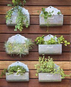 Buzones para nuestras plantas aromáticas. Salud en la cocina.