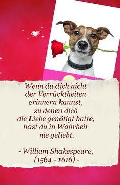 flirtsignale frau Schwerin