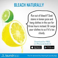 Use Lemon Juice and Sunlight instead of Bleach to clean your clothes without chemicals!