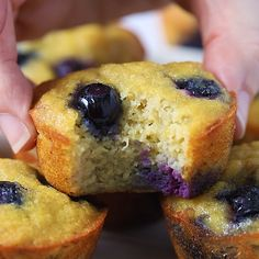 Moist and fluffy coconut flour muffins made with blueberry banana and naturally sweetened with maple syrup or honey! Healthy easy to make and SO DELICIOUS. Great for fast breakfasts and healthy snacks. Gluten free Paleo keto friendly and grain free! Coconut Flour Desserts, Recipes Using Coconut Flour, Coconut Flour Muffins, Flours Banana Bread, Peanut Butter Muffins, Baking With Coconut Flour, Coconut Recipes, Gluten Free Recipes, Keto Recipes