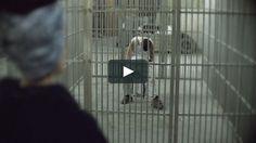 """Video oficial de la marca ArtePorvo, """"Porvo Negro"""" (nueva colección 2017) en Vimeo."""