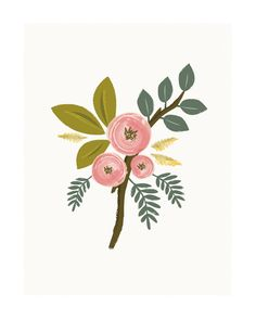 Botanical no.1 Wall Art Prints by Karidy Walker | Minted