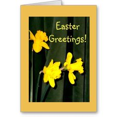 Easter Greetings! Card     An attractive card with fresh  looking daffodils;  a green pleated velour fabric makes a lovely background.