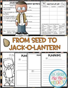 From Seed to Jack-o-lantern...Interactive and Paper Pencil! Poetry Anchor Chart, Anchor Charts, Word Work Activities, Grammar Activities, Writing Complete Sentences, Pumpkin Life Cycle, Nouns And Adjectives, Word Work Centers, Types Of Sentences