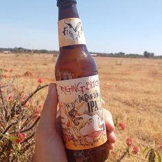 Foto e texto por por  @cervejeirodoquadrado  Raging Bitch Belgian IPA uma IPA bem marcante. Álcool e Lúpulo bem presentes e um ótimo equilíbrio entre os dois. Uma das minhas IPAs preferidas! @flyingdogbrewery mandou muito bem nessa cerva! 83% ABV 60 IBU . . #CervejeiroDoQuadrado  #lager #ale #paixaoporcerveja #cervejaartesanal #beer #cervejaespecial #cervejeiro #craftbeer  #cervejeirocaseiro #bebamenosbebamelhor #instabeer #instacerveja #ilovebeer #cevada #instabrasilia #bsb #brasilia #DF…