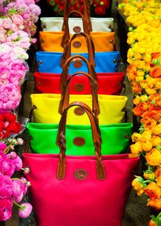 COLOR YOUR WORLD with the Nylon Shopper in fifteen gorgeous hues, all with braided leather trim. See more at: www.dooney.com/db/AOW061013IN437-pin