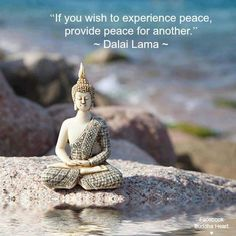 Check out the best Buddha Quotes on life, meditation, spirituality, karma, anger and more to be enlightened you change your life positively. Buddha Zen, Buddha Buddhism, Buddha Quote, Tiny Buddha, Gautama Buddha, Buddhist Teachings, Buddhist Quotes, Spiritual Quotes, Buddhist Wisdom