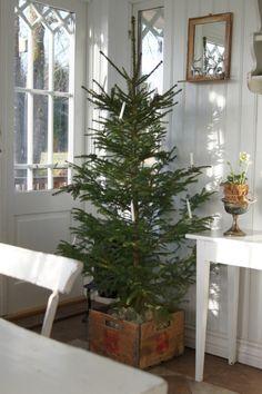 Nordic Christmas Tree | Scandinavian Christmas Tree via antlivinorregrd  leuk idee hoe de boomstam is weggewerkt: houten kistje met stenen erin