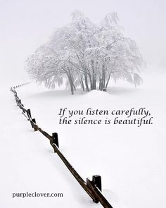 Beautiful picture & quote