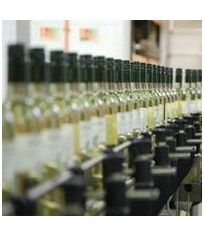 UK bottler leapfrogs agency model