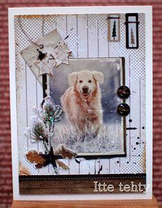 Itte tehty: Koiramainen talvi