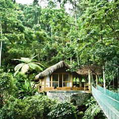 One of the most amazing places I have stayed, and would stay again in an instant, is the Pacuare Eco Lodge in Costa Rica... I stayed in the above cabana high in the rain forest canopy above the ground. The cabana has its own private bridge and hot tub.... You can walk out on the bridge and see...