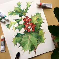 Christmas elements on Behance Watercolor Plants, Watercolor Cards, Holiday Themes, Types Of Art, Botanical Prints, Diy Cards, Art Forms, Hand Painted, Drawings