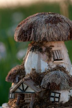 The Enchanted Storybook. Fairy homes.